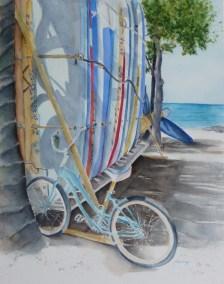 Boards n Bikes - SOLD
