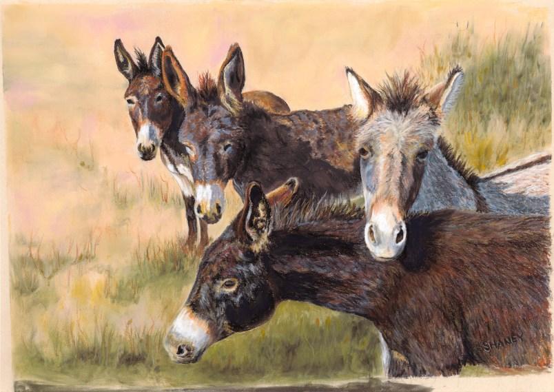 Donkey pastel paintings