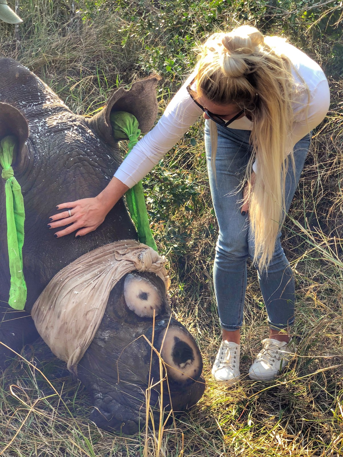 Rhino dehorning | my experience