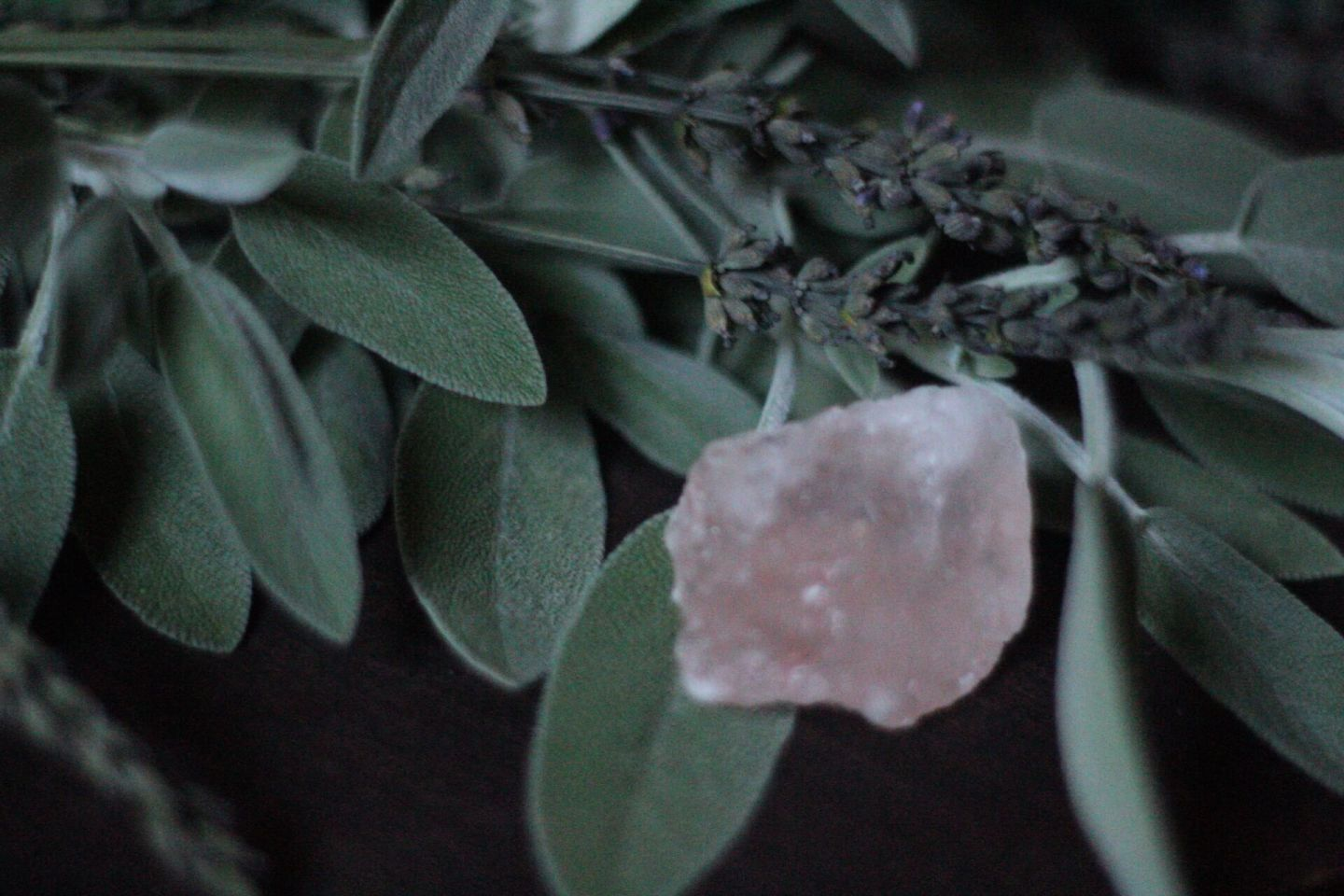 Sage and Lavender Smudge Cleansing Spray