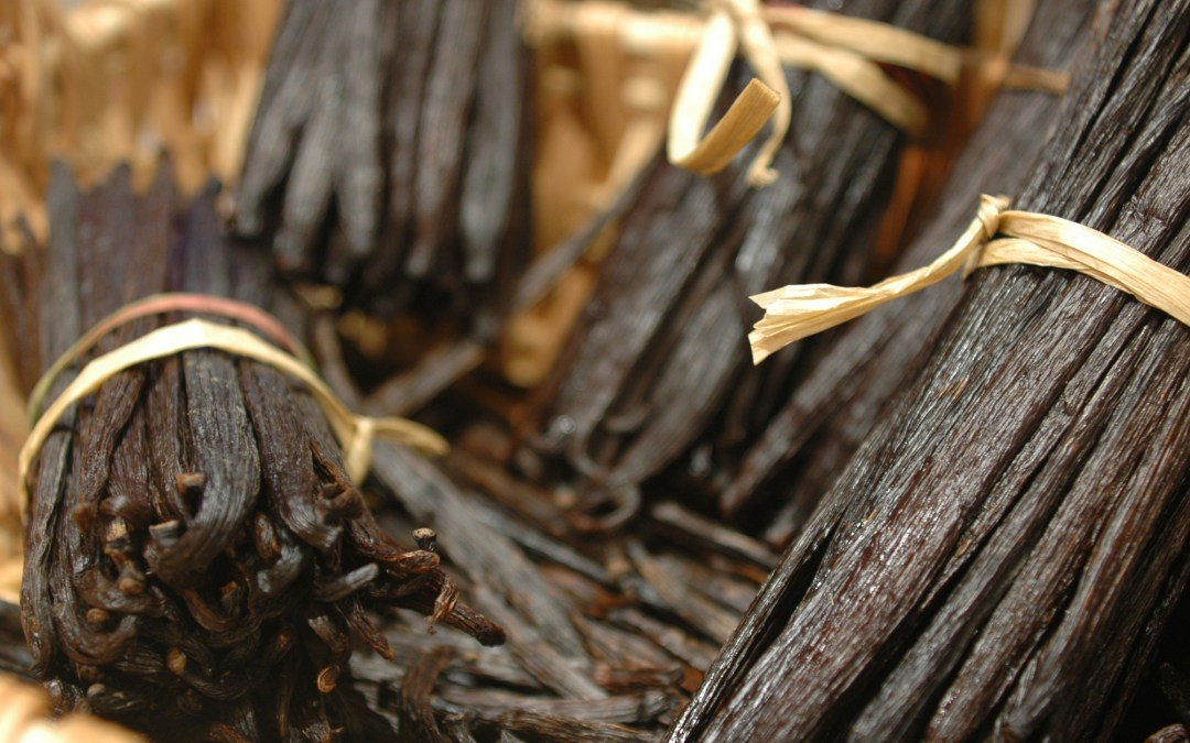 Vanilla Facts – Did you know!