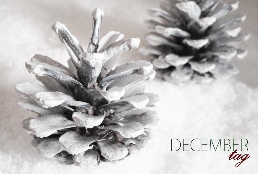 1 december tag