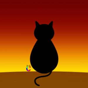 Profile photo of RainbowCat