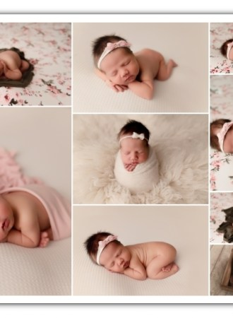 newborn girl session; floral, cream, and pink colors