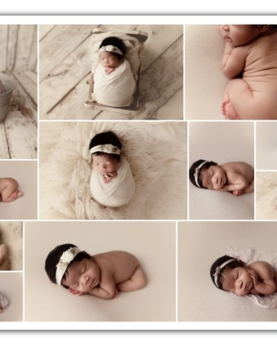 newborn girl session; cream and grey colors