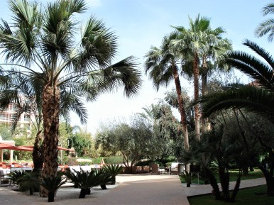 Marrakesh hotel courtyard