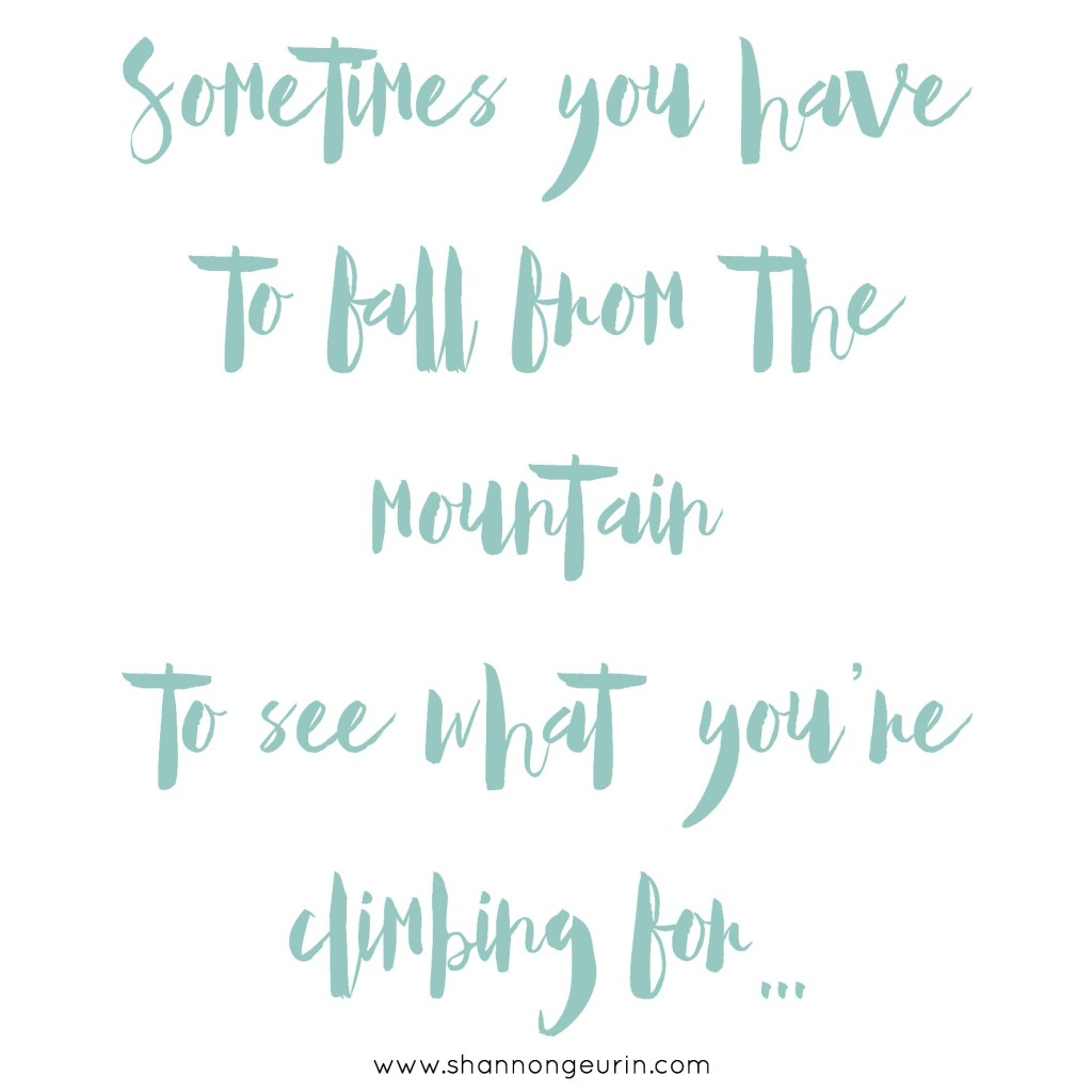 Sometimes you have to fall from the mountain to see what it is you're climbing for...