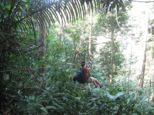 should you do the gibbon experience in Laos?