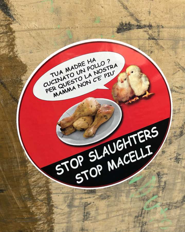 How to be vegan in Italy. Stop macelli sticker.