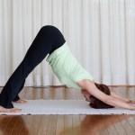 Point 5 心身のバランスを整えてストレスに強くなる!
