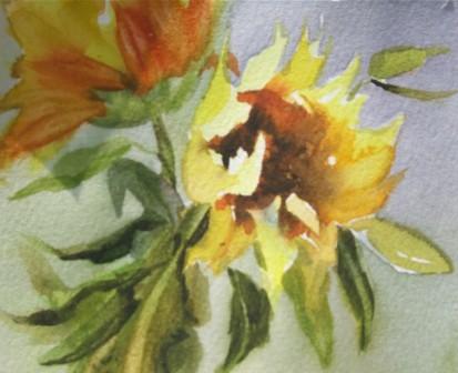 sunflower-days.jpg