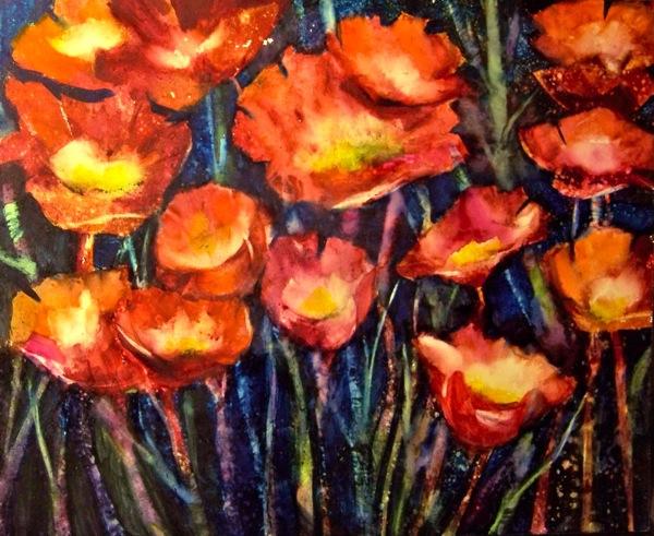 midnight poppies