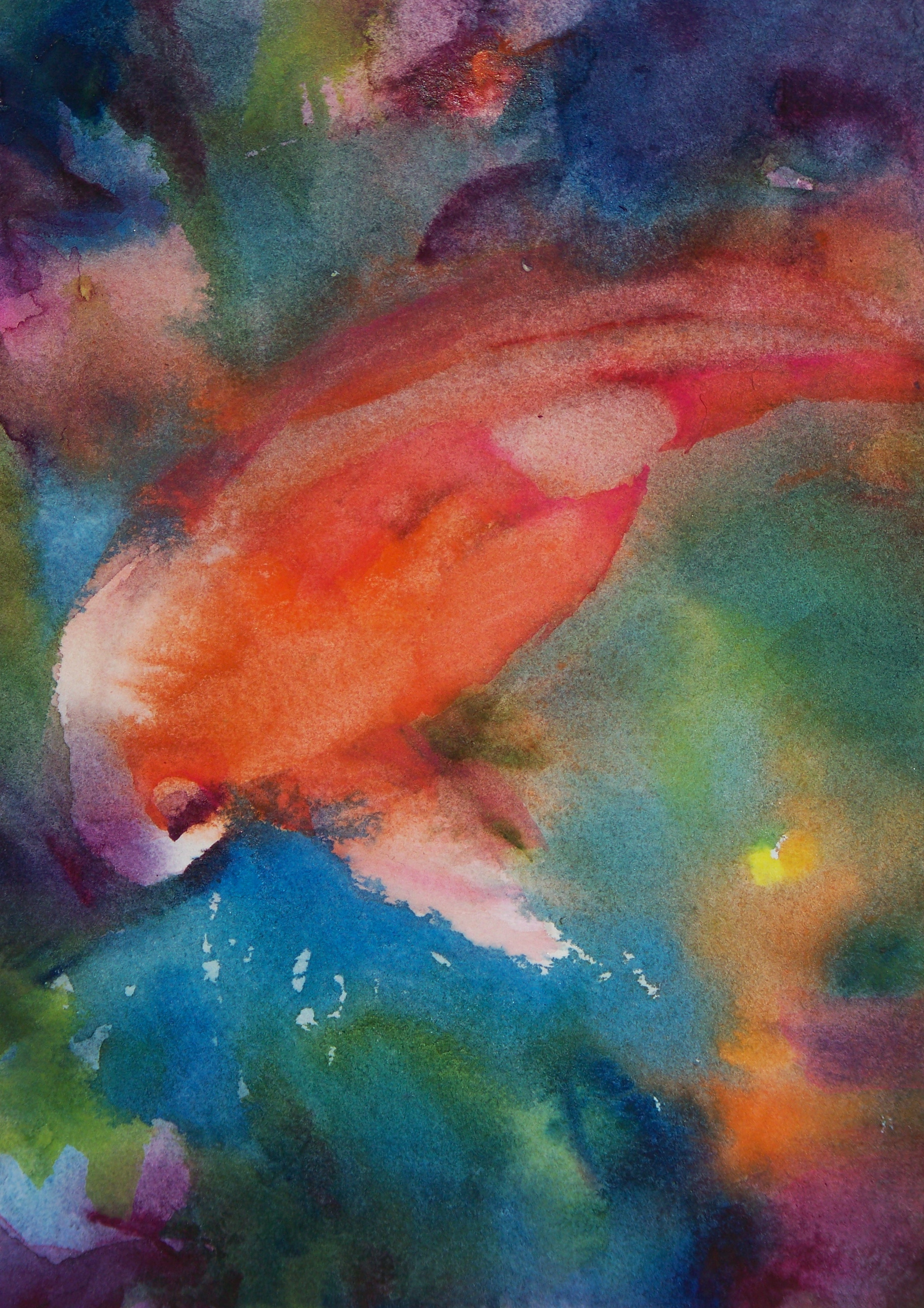 Koi  A painting a day