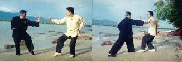 kungfu combat