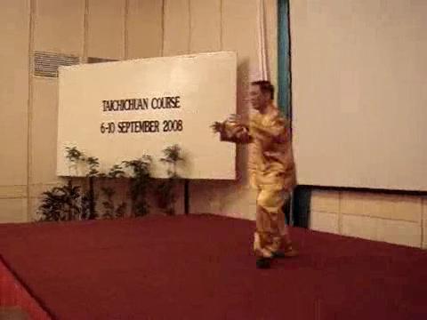 Intensive Taijiquan Tai Chi Chuan