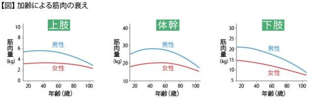 年齢による筋力の低下