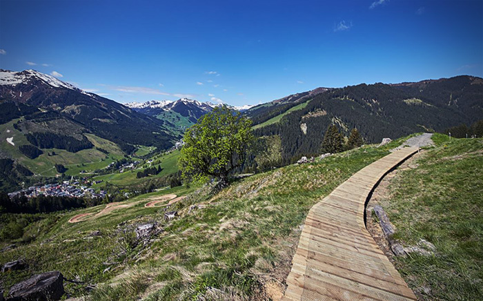 Monti Trail