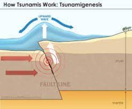 How earthquake triggers Tsunami: school project on tsunami