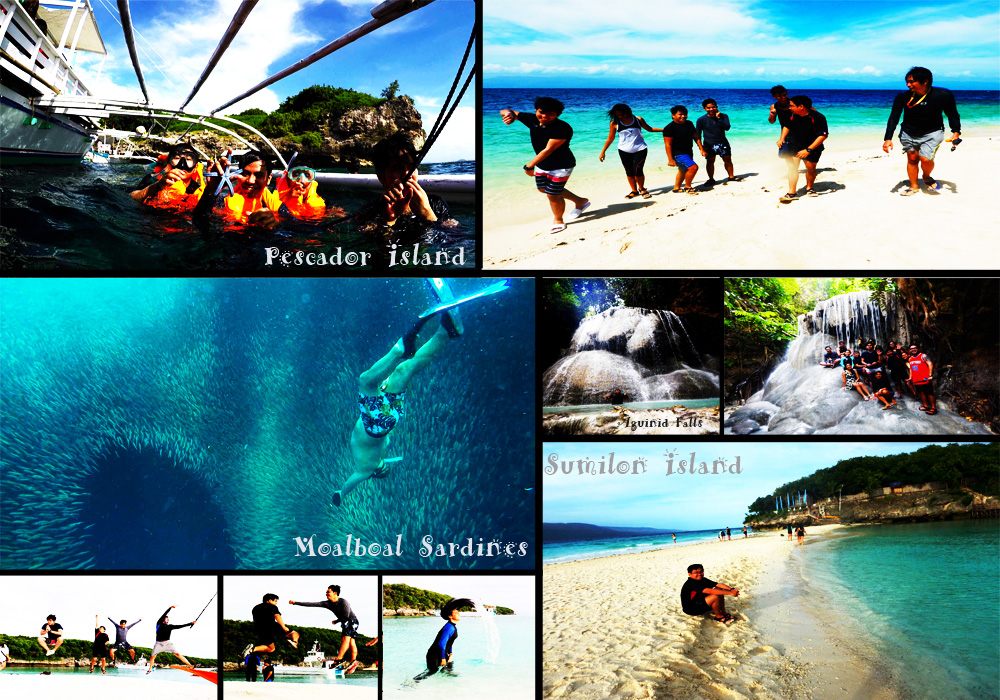 Once Upon a Time in Cebu | Pescador Island, Moalboal Sardines, Aguinid Falls & Sumilon Island