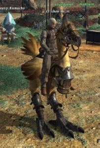 Casimir on a rented chocobo