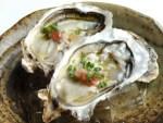 牡蠣が食べれるイベントは北海道へ!あっけし桜・牡蠣祭りを紹介