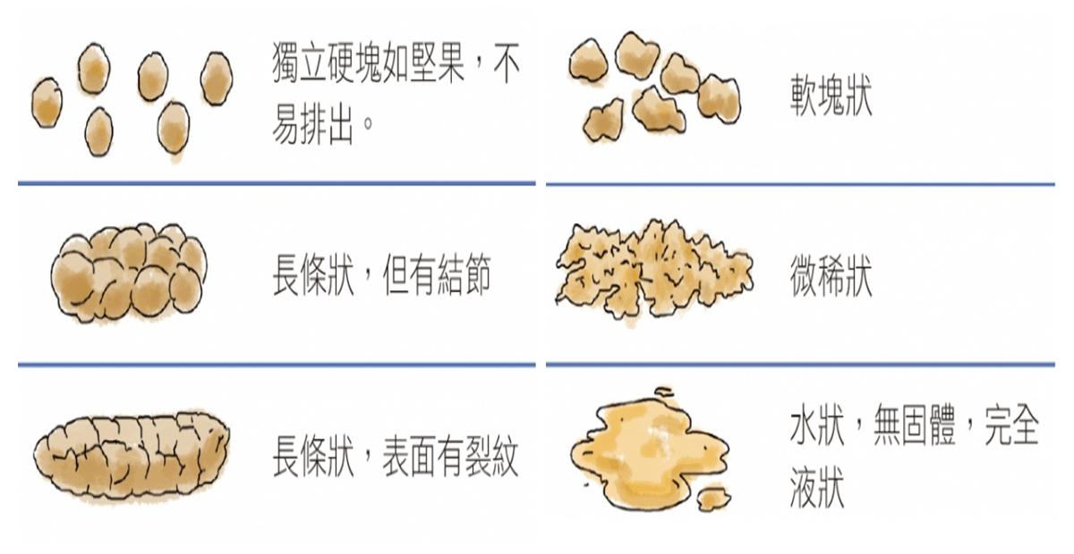 趕快看!出現這六種「大便形狀」,表示「腸道」正在土崩瓦解!吃