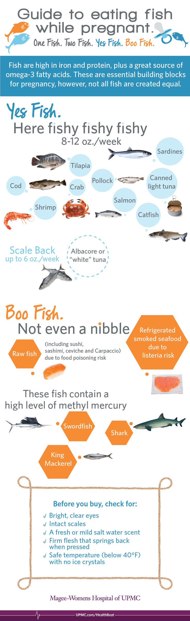 Infographic: Eating Seafood During Pregnancy | UPMC