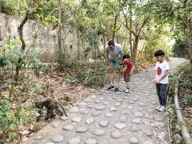 兄弟倆害怕壽山的猴子