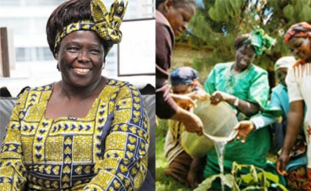 肯亞環保活動家旺加里馬泰