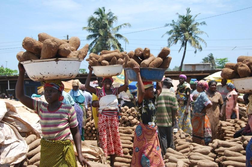 農業在迦納經濟佔很重要的位置。