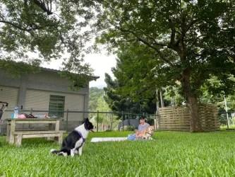 帶你深入毛小孩的心靈世界!寵物溝通師蕗米:「透過和牠們的溝通。讓我對人生有了不一樣的詮釋。」   女子學