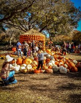 Dallas Arboretum http://wp.me/pSlDL-agA