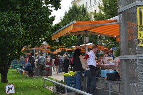 Market at IP Pavlova