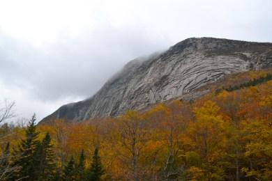 Pre-Hike_Mountains&Trees