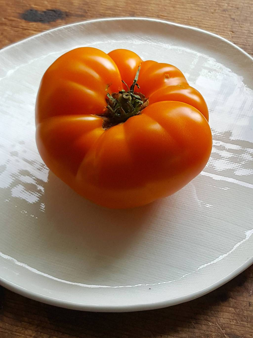 Tomato For One!