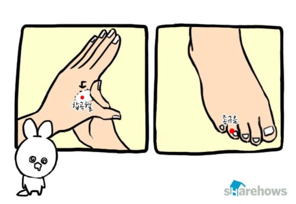멀미 예방법