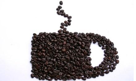 커피 찌꺼기의 다양한 활용 방법