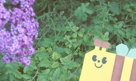 속지가 보일듯 말듯한 시스루 카드, 꿀벌카드 만들기!