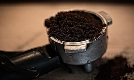 커피 찌꺼기 활용법 Best4