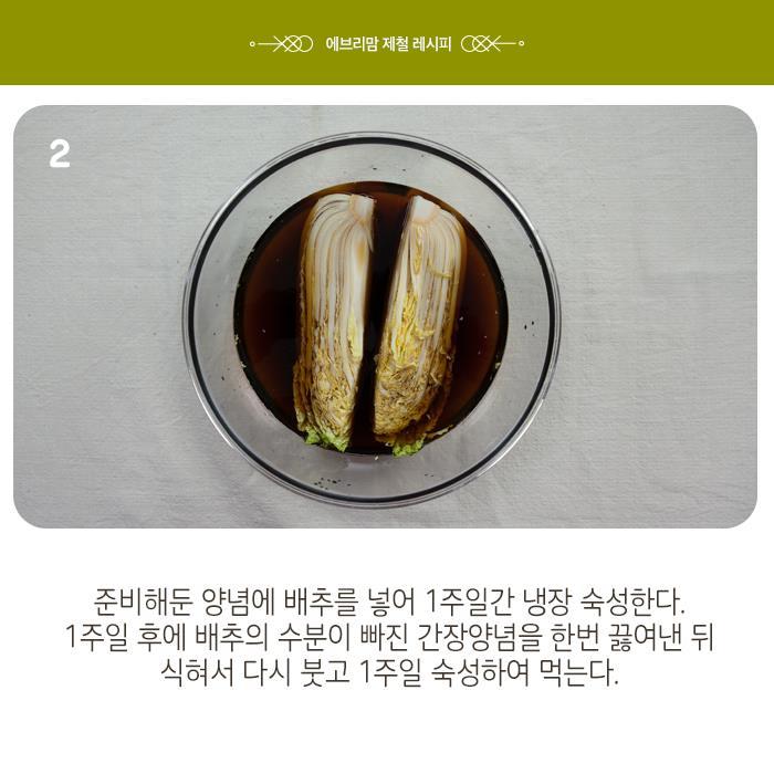 napa cabbage 12