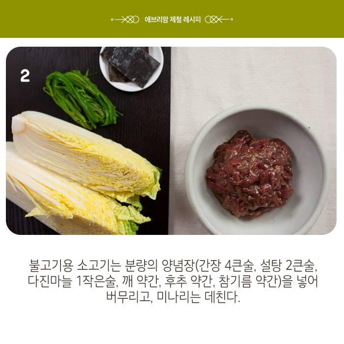 napa cabbage 17