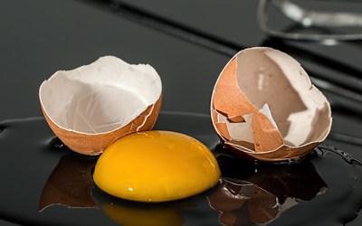 달걀 껍데기를 재활용하는 10가지 방법