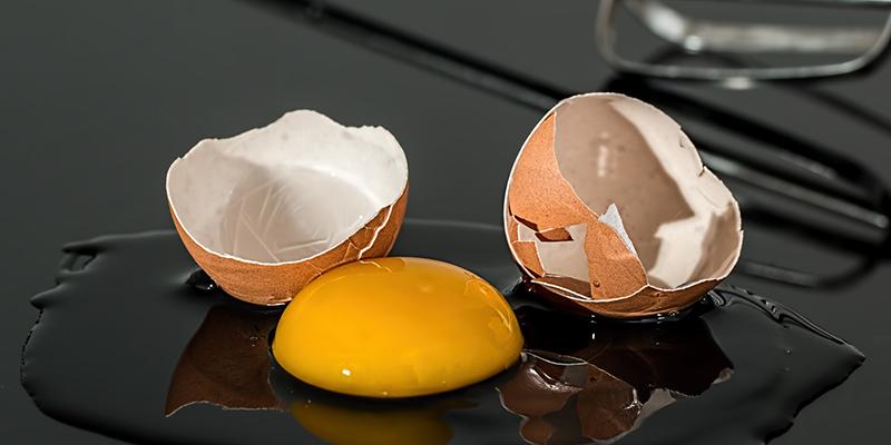 달걀껍질을 재활용하는 10가지 방법