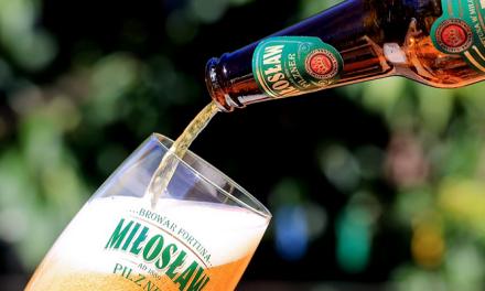 무더위를 이겨내는 시원한 맥주 페스티벌 4가지