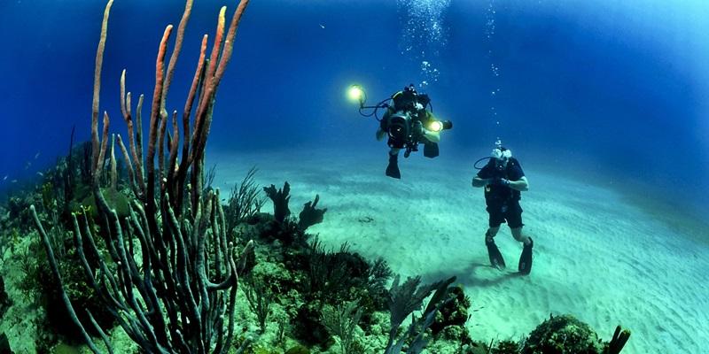 세부 바다에서 즐길 수 있는 액티비티 3가지
