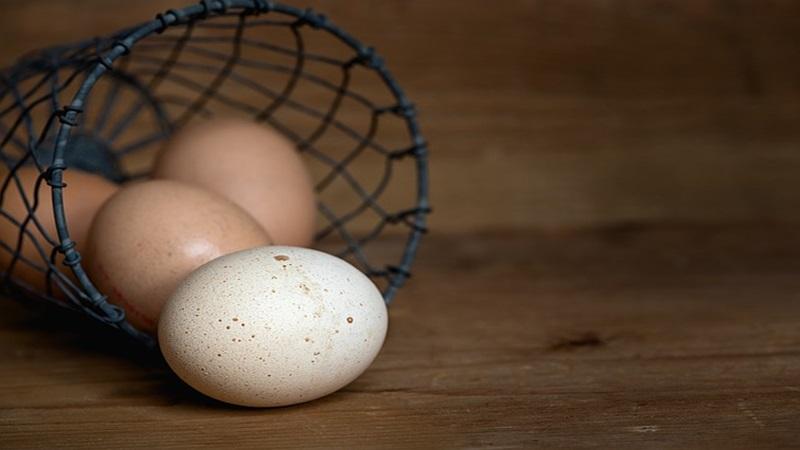 egg-1385315_640