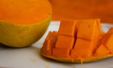 맛집 블로거들이 추천하는 세부 맛집 체험
