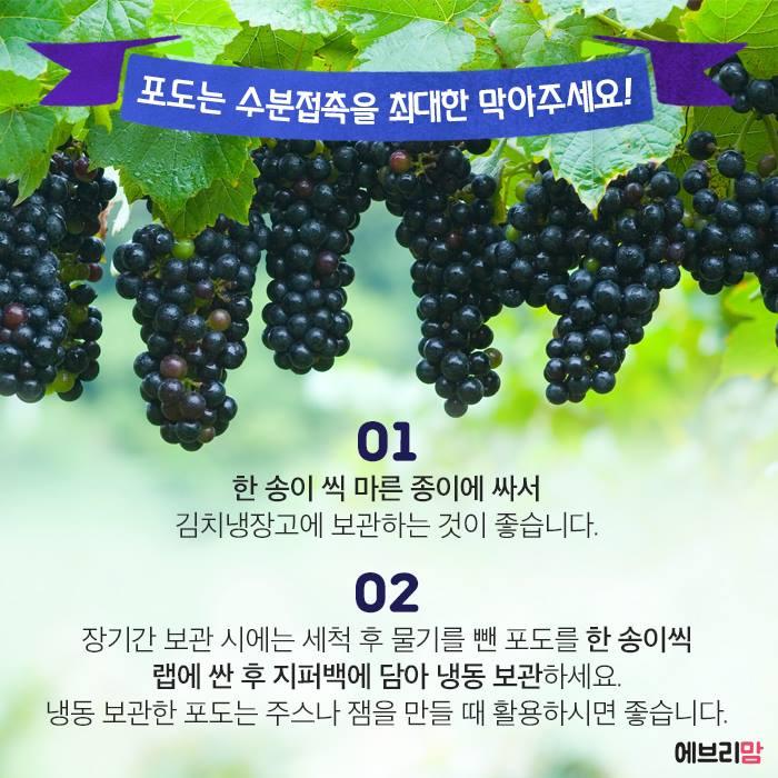 Fruit storage method 03