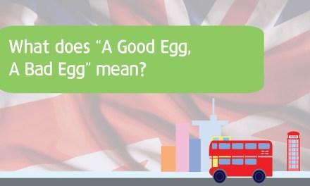 """A GOOD EGG / BAD EGG"", 좋은 계란, 나쁜 달걀?"