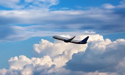 비행기 탈 때마다 조마조마한 입국서류 자신 있게 쓸 수 있는 꿀팁!